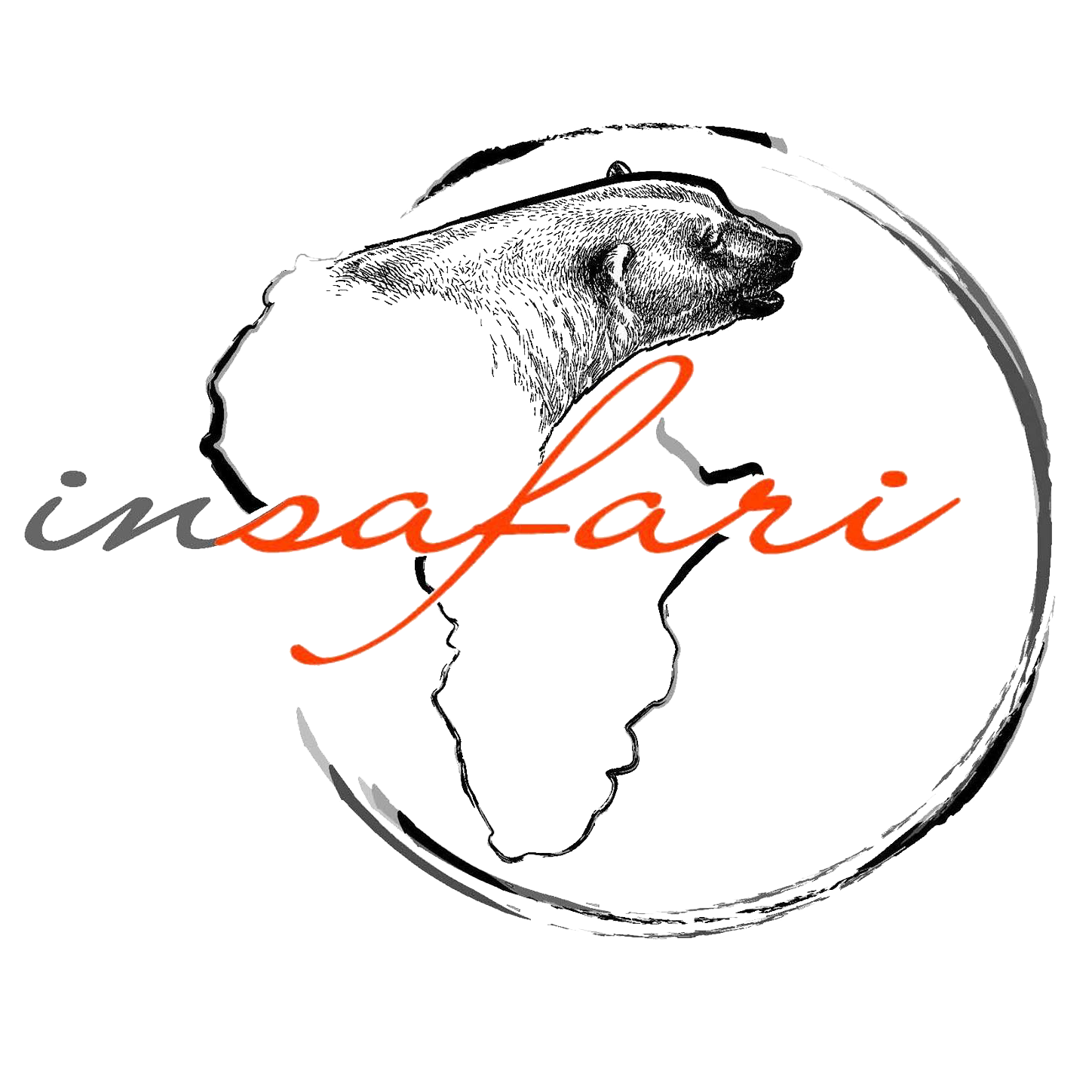 Insafari Tour Operator