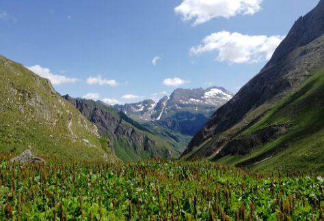 Val Formazza Pampa trek (18)