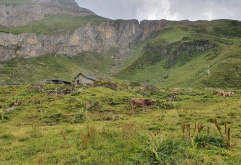 Val Formazza Pampa trek (6)
