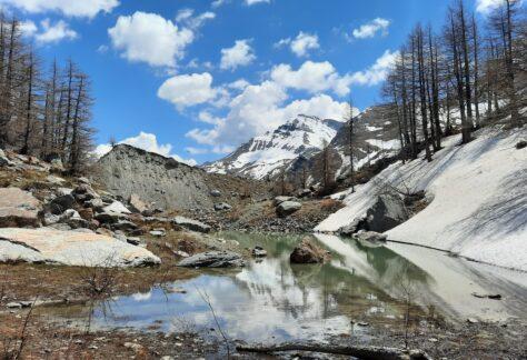 Val Veny Monte bianco Pampa Trek (10)