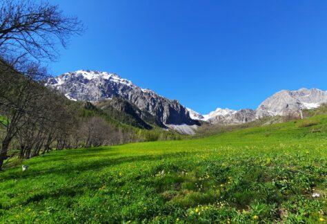 Valle maira pampa trek (1)