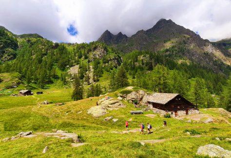 Valsesia pampa trek (6)